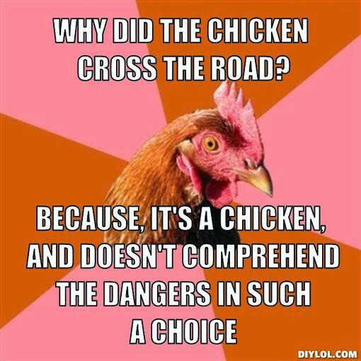 anti joke chicken meme generator why did the chicken cross the road because it s a chicken and doesn t comprehend the dangers in such a choice 5fac53