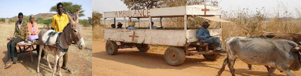 donkey ambulance